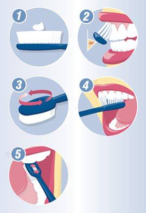 step by step instructions on how to brush your teeth